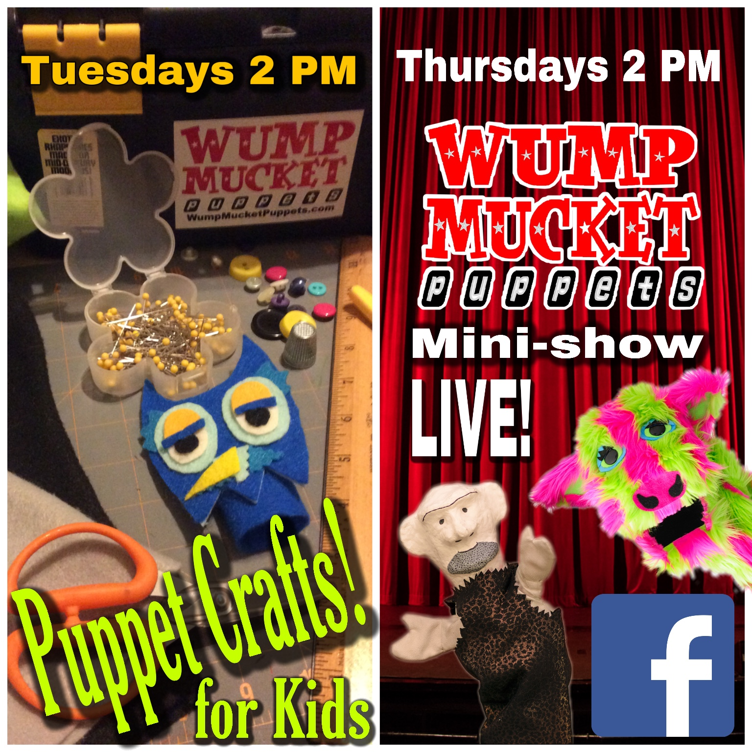 Puppet Crafts for Kids webcast