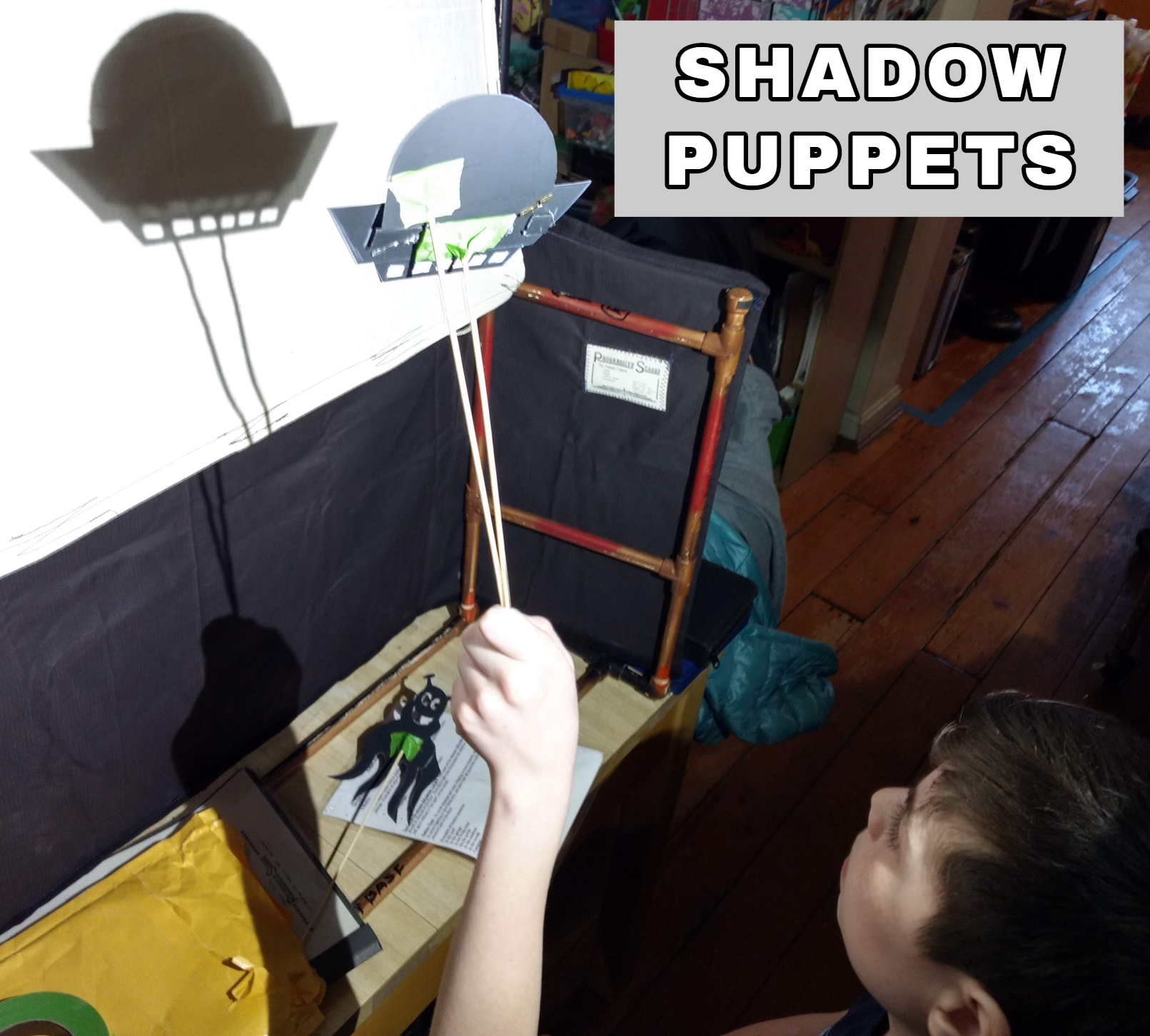 SHADOW PUPPETS picture